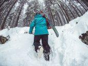 Nosiče snowboardů